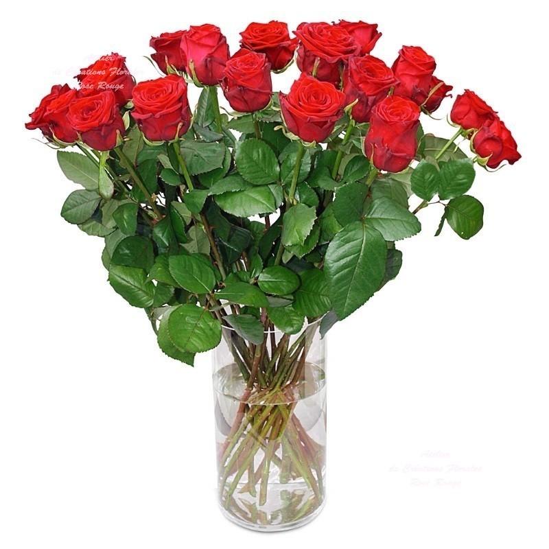 Bouquet de roses rouges saint valentin - Fleurs saint valentin ...