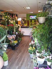 Fleuriste paris 19 livraison fleurs paris 19 atelier for Livraison plantes paris