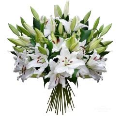 BOUQUET TENDRE LYS