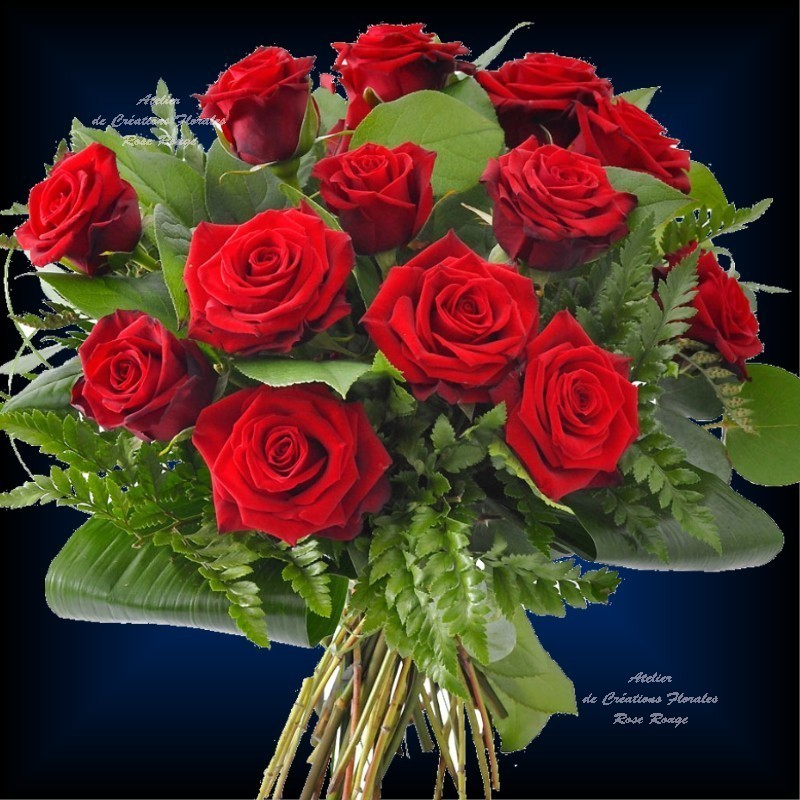 Bouquet de roses saphir for Bouquet de fleurs rose