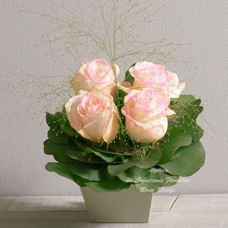 Roses poudre rose for Envoie de bouquet